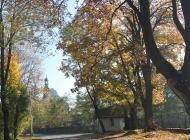 Złota Jesień w Gminie Secemin